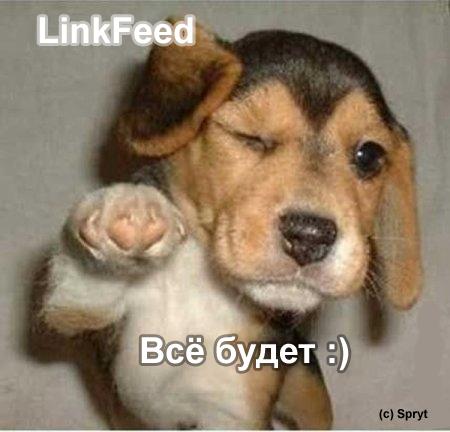 LinkFeed
