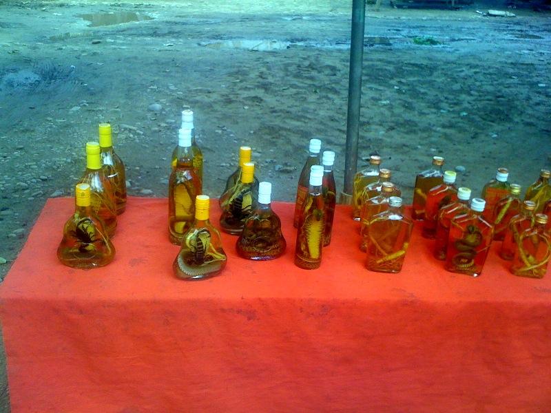 Гады в бутылках
