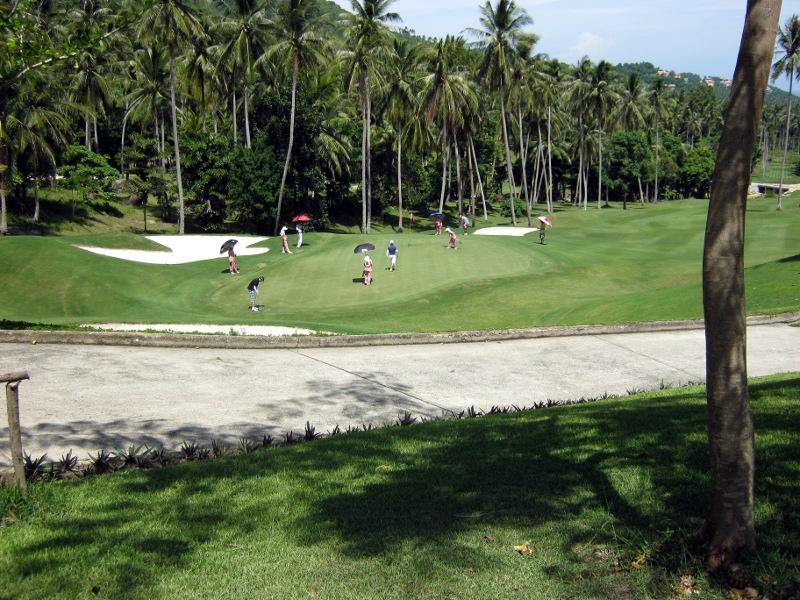 Люди играю в гольф