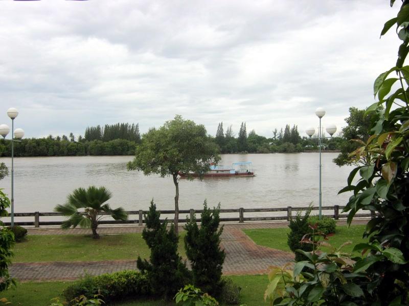 Вид из окна (река)